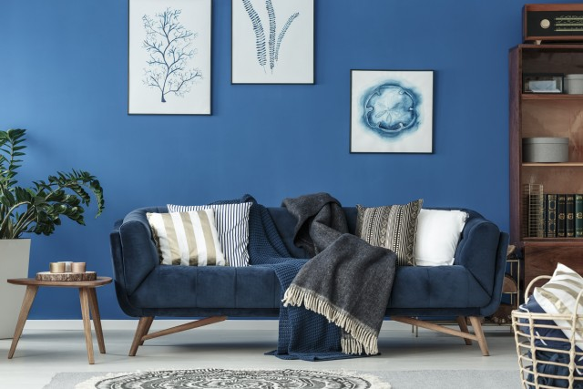 a bold living room with a bright blue painted accent wall with simple decor and a velvet couch